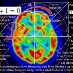 A quantum mind